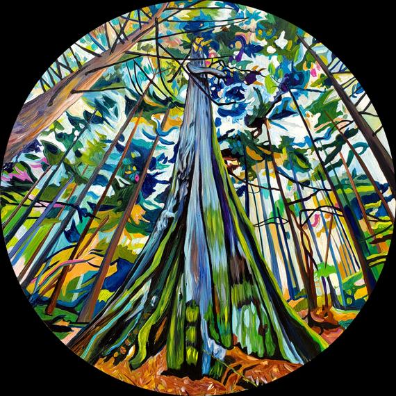 Cobalt Cedar Stanley Park 24in round Acrylic on wood panel $1295