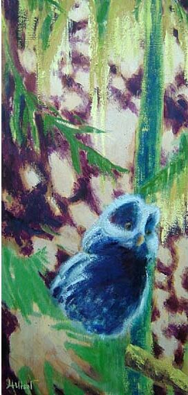 Little Owl 12x24in Acrylic Oil and Wax $400
