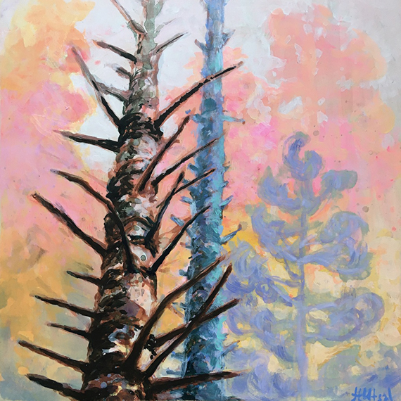 Spruce Trail 12x12in Acrylic and Oil $300