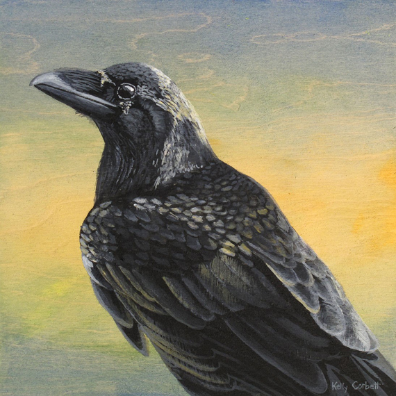 Raven #11 10x10in Acrylic $270