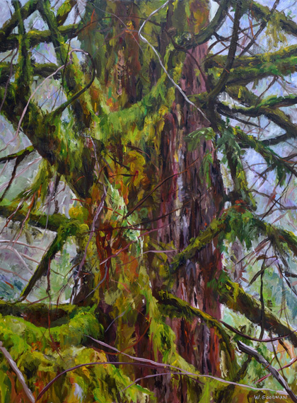 Rainforest IV 36x48in Acrylic $3200
