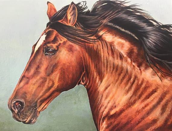 Freedom 10x8in Acrylic $300