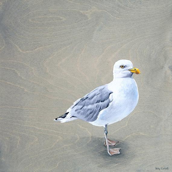 Seagull 16x16in Acrylic $675